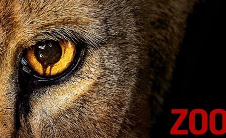 Séries: Zoo | Citando Palavras